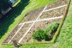 Colti nell'orto – Progetto antidispersione/inclusione